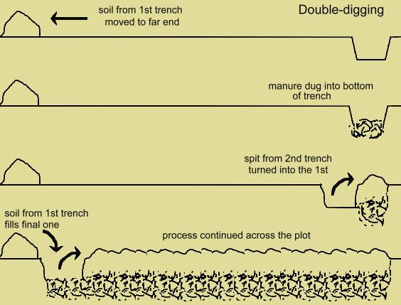 diagram of double-digging